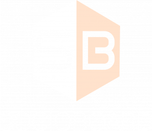sb_box_white_logo